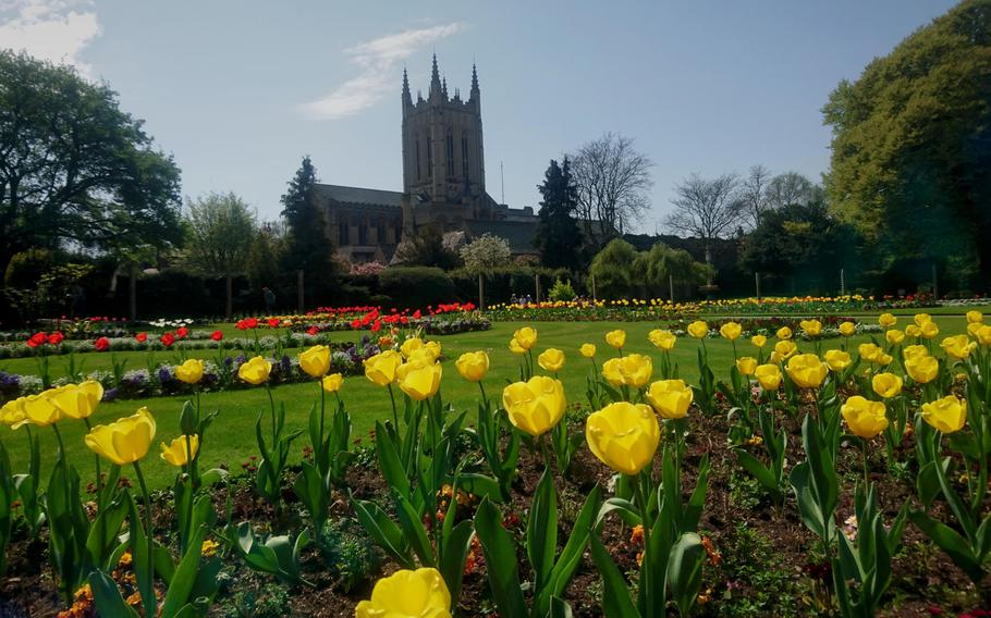 The central area of the Abbey Gardens in Bury St. Edmunds, England. About 20,000 plants and bulbs are displayed and rotated through seasonal arrangements.