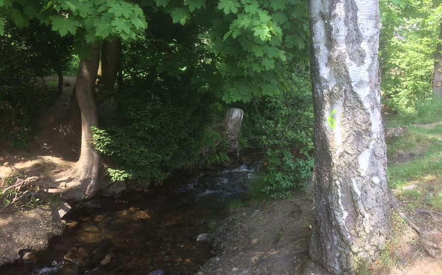 A stream moves through Taunus mountain woods near Oberursel, Germany. Oberursel's mix of outdoor and cultural activities makes it a perfect place to visit in the warm summer months.