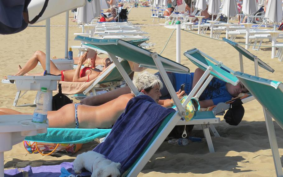 Dogs at Bau Bau Beach in Jesolo, Italy, are treated as guests, not pests. Here, a little white dog snoozes in the shade of an umbrella.