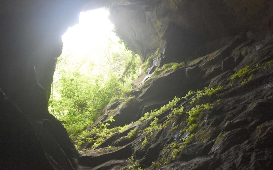 Even though the sun doesn't shine much on many spots of Grotte Caglieron, that doesn't stop green stuff from growing in areas of the caves.