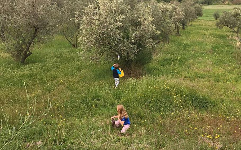 In Tuscany, it's possible to stay in farmhouses in the countryside, like this olive tree plantation in Iano, where kids were hunting for eggs on Easter.