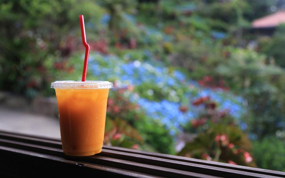 Fresh tankan-tangerine juice is made from locally grown tangerines and served at a small cafe at Yohena Hydrangea Garden on Okinawa.