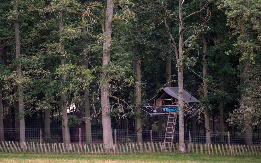 For overnight stays, you can book a treehouse inside the nature park at the the Domain of the Caves of Han, Han-sur-Lesse, Belgium. From platforms suspended between trees, you can enjoy your very own private nature show.