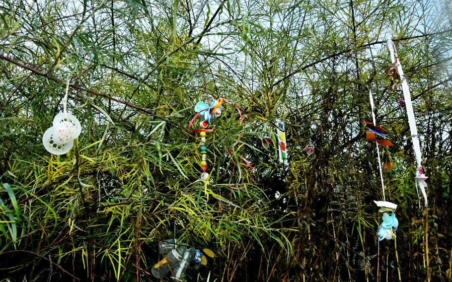 Baby bottles and pacifiers hang on the Schnullerbaum - literally pacifier tree - in the Luisenpark in Mannheim, Germany, on Nov. 30, 2019. Children hang their pacifiers on trees as a rite of passage when they, or their parents, think it's time to kick the habit.