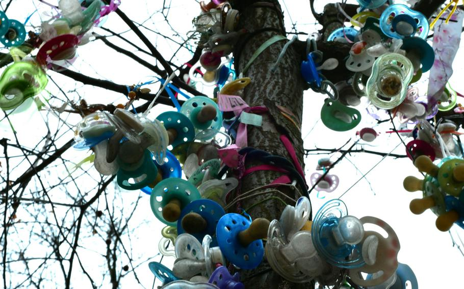 The Schnullerbaum - literally pacifier tree -  in Landau, Germany, is festooned with pacifiers and baby bottles that were hung on it by children when they or their parents thought it was time to give up the habit. The Schnullerbaum concept originated in Denmark and has caught on in Germany.