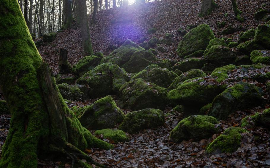 Moss covered rocks may hide a few of the tree carvings at Steckeschlaafer gorge.