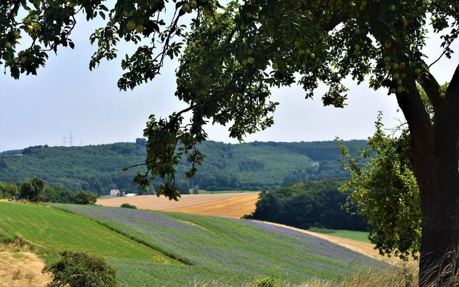 Traumpfade Hoehlen und Schluchtensteig, a 12-kilometer hike in southwestern Germany, starts with this serene countryside facade. But the trail proceeds through a variety of stunning landscapes as it goes along.