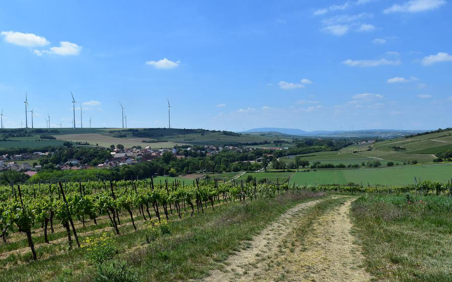 This portion of the 24-mile Zellertalweg cuts through the vineyards in the hills between Monsheim and Moelsheim in the German state of Rheinland-Pfalz.