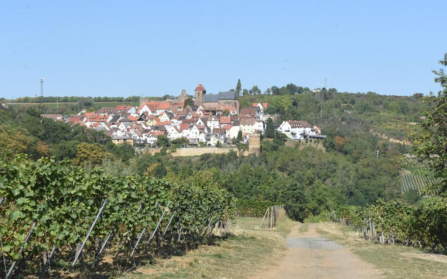 A stretch of the Pfalz Wine Trail takes hikers through the vineyards between the villages of Neuleiningen and Battenberg, Germany.
