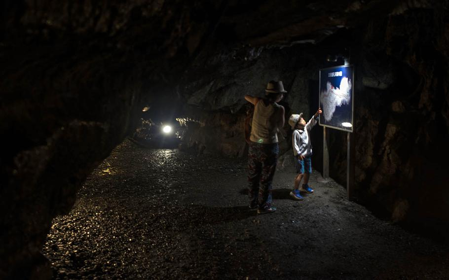 A mother and son plot their course before exploring Nippara Limestone Cave near Okutama, Japan.
