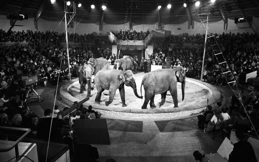 Filming for Ed Sullivan's variety show at the Circus Krone in Munich in November, 1965.
