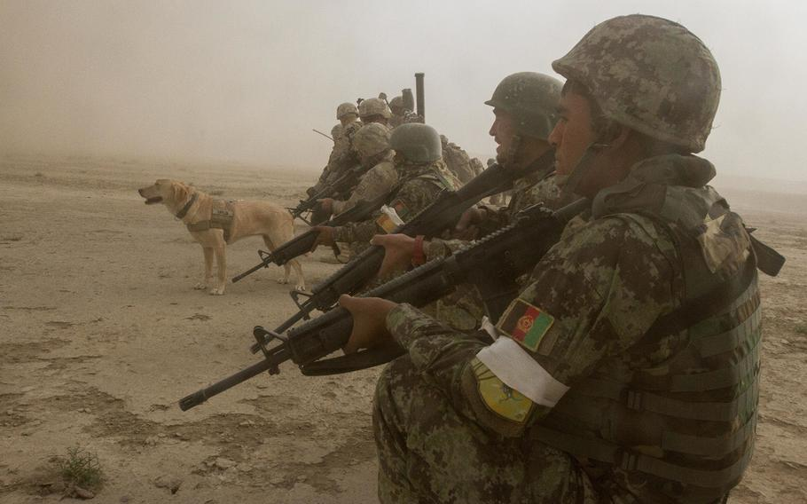 Afghan National Army and U.S. soldiers, and Taylor, a U.S. service dog trained to find explosives, wait in a security formation for the dust to clear at the start of a partnered air assault mission to the town of Mirugal Kalay, Afghanistan, Oct. 23, 2014.