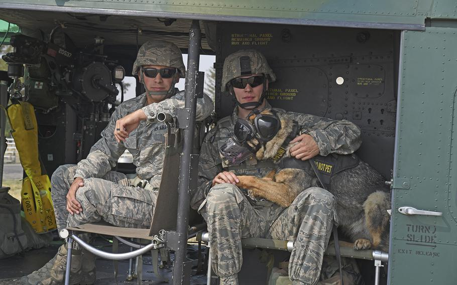 Staff Sgt. Daniel Tabita and Staff Sgt. Kyle Wentz, 92nd Security Forces Squadron military working dog handlers, and Brenda the dog prepare to fly during huey training with the 36th Rescue Squadron Aug. 15, 2018, at Fairchild Air Force Base, Wash. For most of the canines, the training included their first flight.