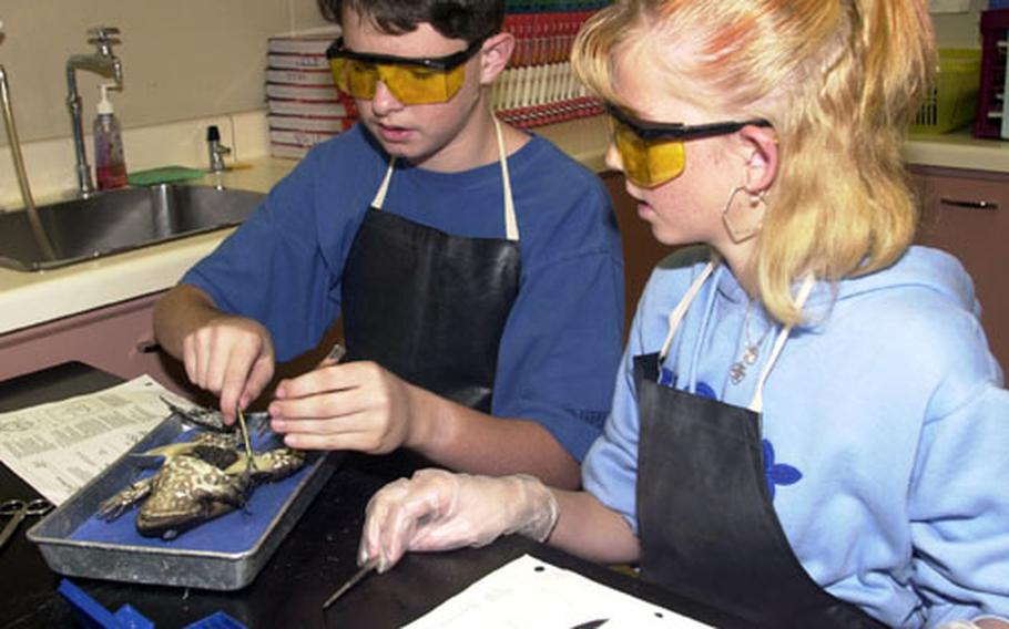 Michael Flynn McKenzie (left) and Trisha Carlile (right) take a peek inside their frog during their Lester Middle School science class. The two were among students who dissected frogs as a final activity into the study of body systems.