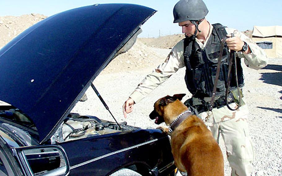 Staff Sgt. Russell McLaughlin searches a vehicle with the help of his dog, Sonja, at the U.S. airfield at Kirkuk.