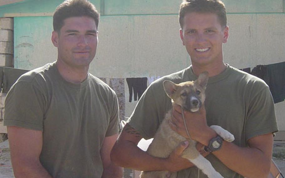 Marine Sgt J.D. McAfee, left, and Cpl. Michael Menkewicz pose with Dagger, their adopted dog, in Southern Iraq.