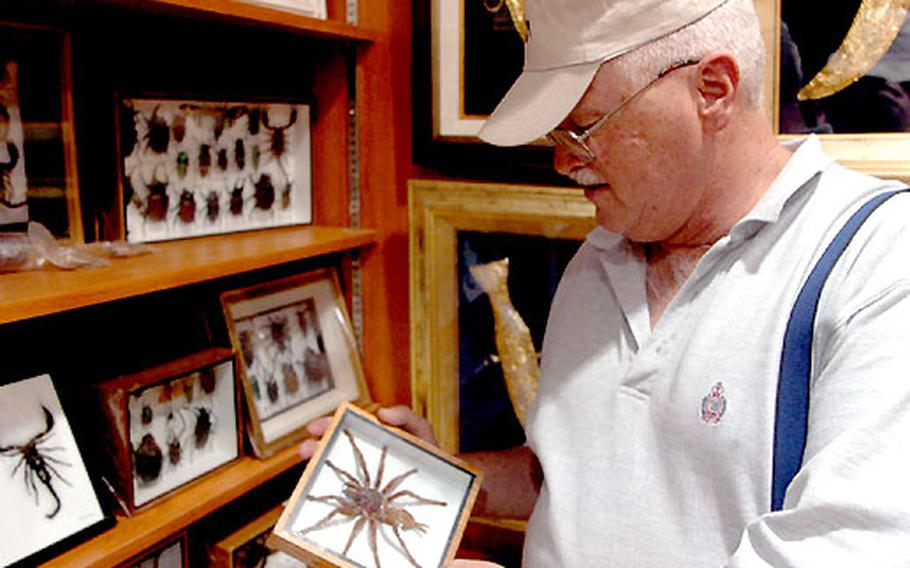 Master Sgt. Dan Fishel, chaplain bodyguard with 3rd Personnel Command from Winston-Salem, N.C., examines a massive desert spider under glass at a shop in Fahaheel.