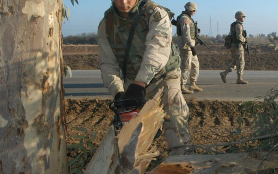 Spc. Dusty Owens, 19, of Glenwood, Ark., sinks his chainsaw into a tree stump during road-clearing operations south of Samarra, Iraq.