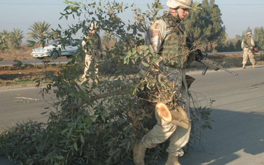 Staff Sgt. Nathaniel Day, 26, of Harrison, Ark., hauls tree limbs across Iraqi Highway 1, also known as Main Supply Route Tampa, south of Samarra, Iraq, as part of Task Force Right of Way, an engineer mission to combat roadside bombs.