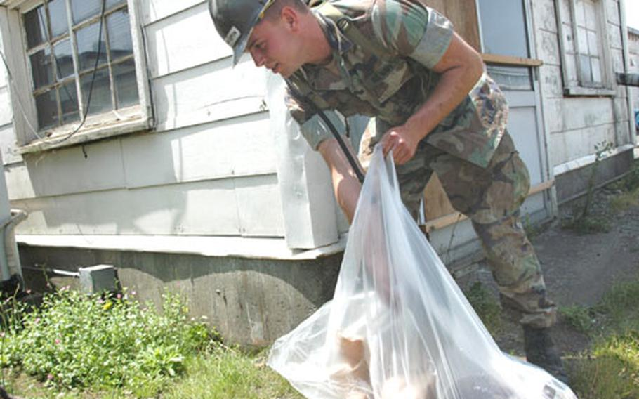 Navy Constructionman Michael K. Harrington, a builder with Naval Mobile Construction Battalion 5, picks up trash Friday as part of an Earth Day cleanup at Naval Air Facility Atsugi.