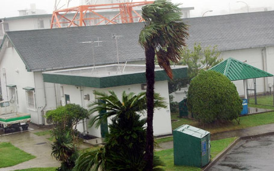 From the top floor of the old Marine Barracks along Sasebo Naval Base's California Drive, the wind from Typhoon Chaba whips the branches of palm trees next to the Armed Forces Network building Monday afternoon. The typhoon was at its worst in the early afternoon hours with wind velocity of about 39 mph with gusts up to 56 mph.