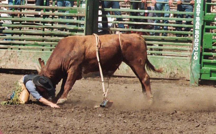 Navy Petty Officer 3rd Class Heath Snow tries to avoid a bull after getting thrown off it at the Ventura Rodeo in California in May. The Navy Seabee works as a professional bull rider in his spare time.