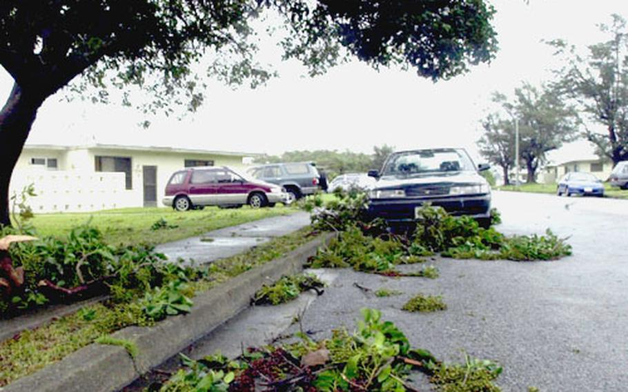 Tree limbs are scattered along a road in the Futenma Housing area of Camp Foster Monday night in the wake of Typhoon Songda.
