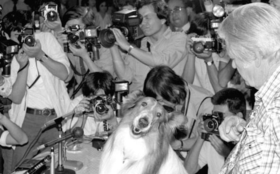Lassie and Rudd Weatherwax meet the press.