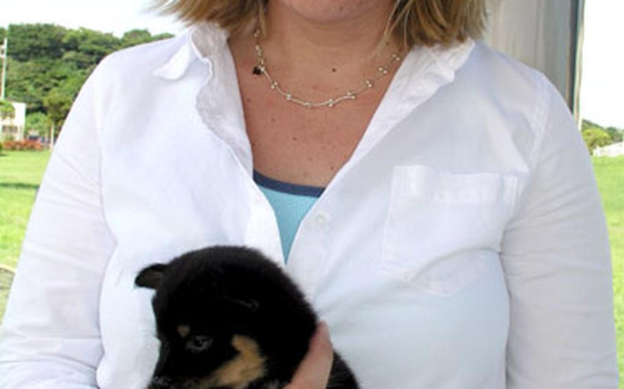 Sara Rodgers, a member of the Okinawa American Animal Rescue Society, holds her foster puppy, Baby.