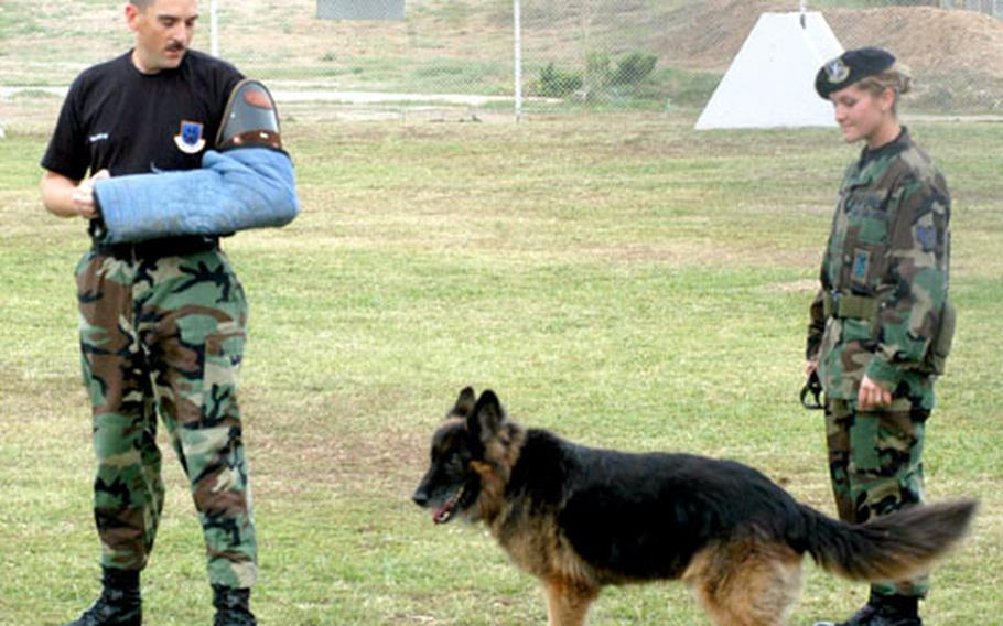 Staff Sgt. John Gravette, helps Staff Sgt. Jessica George and Zeureus, a 5-year-old German shepherd, train for a possible confrontation with a bad guy at the military working dog compound at Incirlik Air Base, Turkey. The dogs and their handlers are busy on base, helping search incoming trucks.