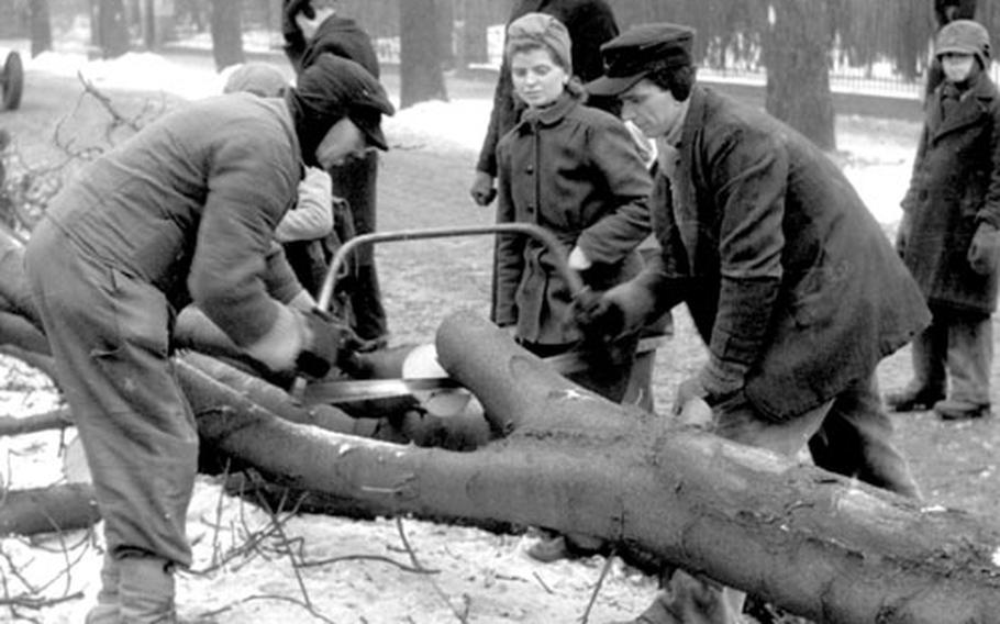 Trees that were once prized for their beauty and shade became the key to survival in Berlin in the winter of 1946-47.