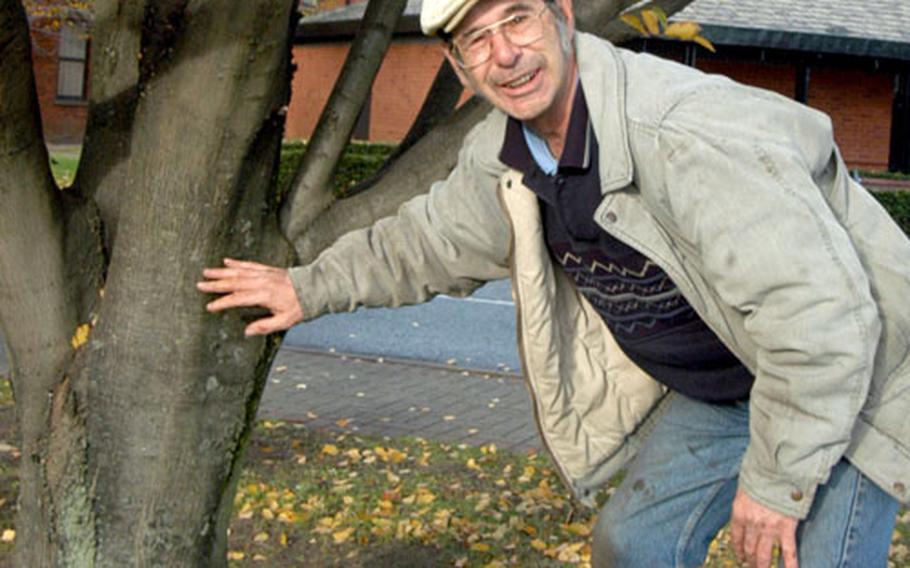 "Mildenhall tree surgeon Ronald ""Moe"" Murkin stands next to a healthy patient at RAF Mildenhall."
