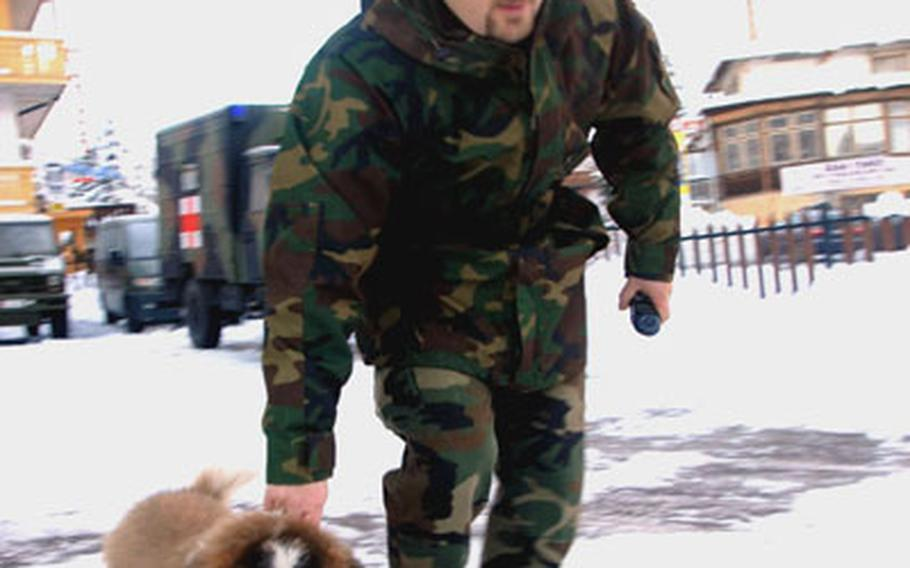 An Alpini, wearing his distinctive feathered hat, guides a mountain dog to his kennel at Arabba, Italy.