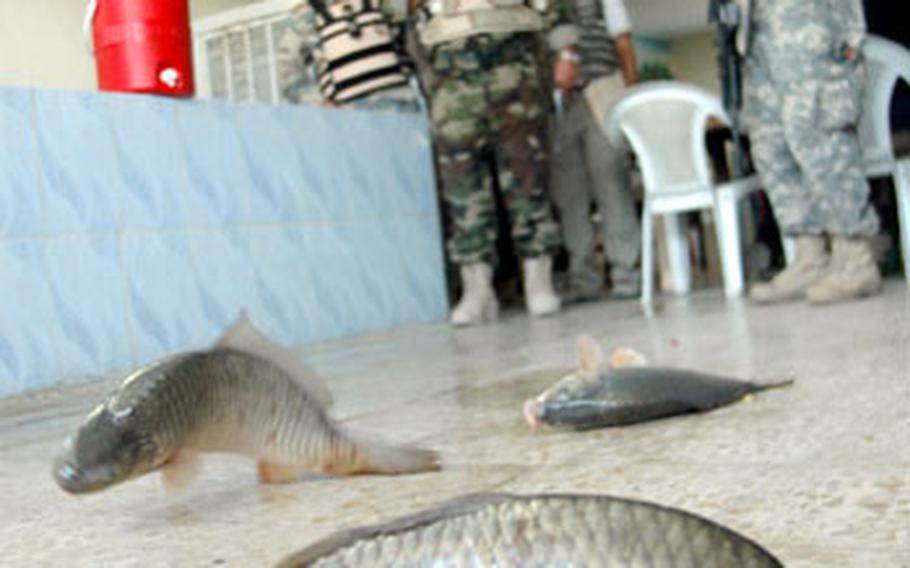 U.S. and Iraqi military officials pause Tuesday at The Boat and watch as fish flop around on the floor. The owner said he was grateful to the $2,500 the U.S military gave him for renovations.