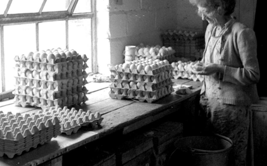 Kiln Farm's 20,000 chickens produced an average of about 4,000 eggs per week.