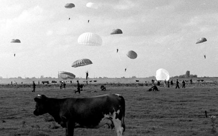 Paratroopers land amid the bovine residents of Dutch farmland.