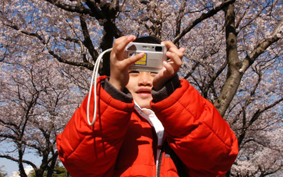 Jeremy Sendaydiego was out taking pictures of the cherry blossoms at Yokosuka Naval Base on Tuesday.