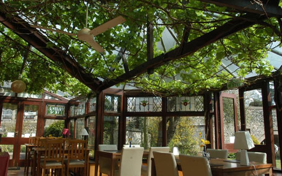 Fresh grapevines dominate the ceiling of the Bridge House Hotel's Riverside Restaurant. This summer the restaurant will use the grapes to make ploughman dishes.
