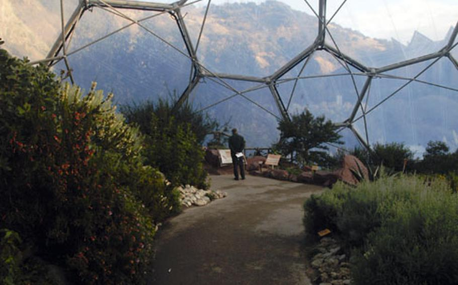 """A visitor at the Eden Project admires the extensive varieties of plants and flowers in the """"Mediterranean Biome."""""""