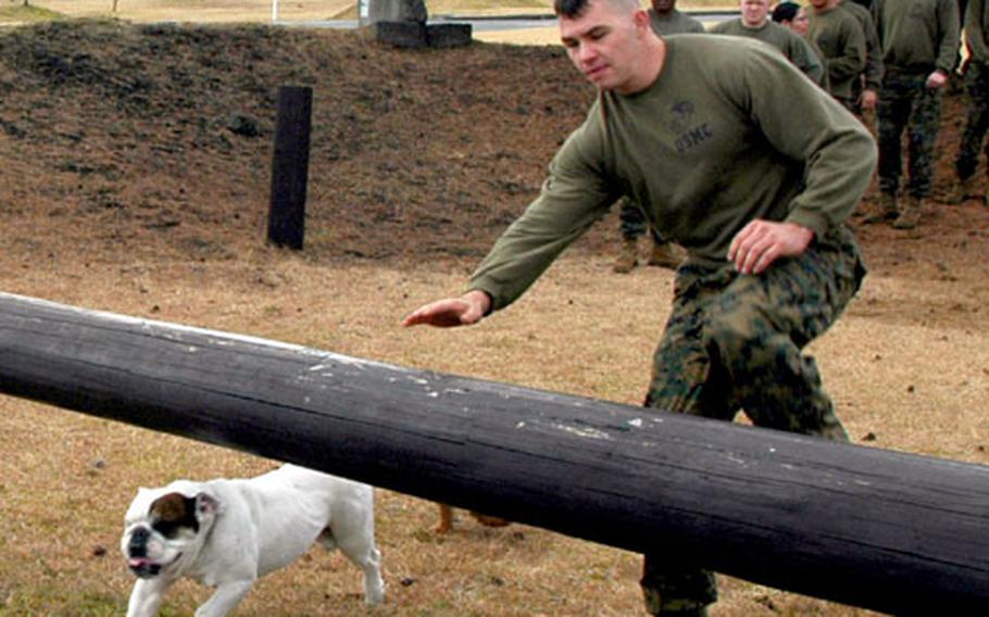Sgt. D.D. Jiggs II keeps pace with a Marine on the obstacle course.