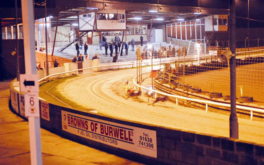 Bettors and spectators look on as greyhounds race down the track at Mildenhall Stadium. The stadium has been entertaining dog race lovers and crowds who show up for stock car and motorcycle races since the 1970s.