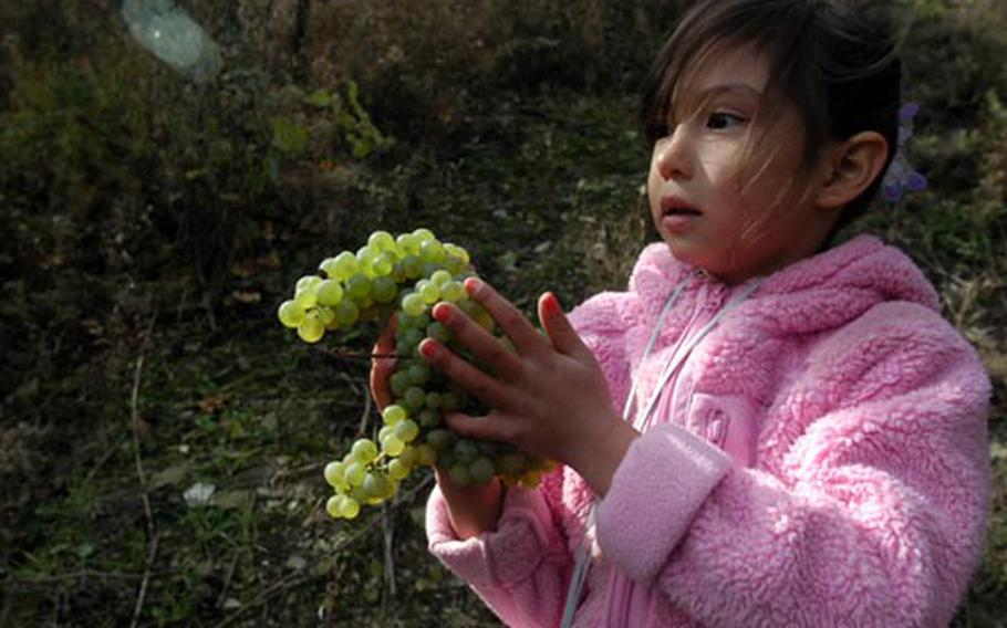 Meisha Camacho, 6, takes some grapes to her mother Tech Sgt. Jane Camacho, of the dental unit.