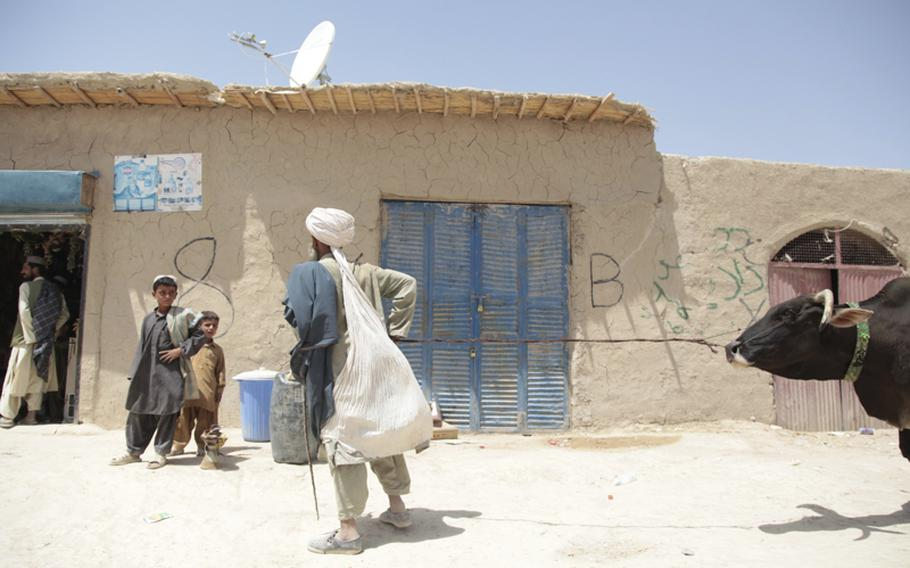 A man tries to coax a cow past a shop where two Afghan soldiers were shot and stabbed by insurgents in June. The shop has a single telephone, which locals from the area rely on for calls as there is no cell phone service in this part of Helmand province.