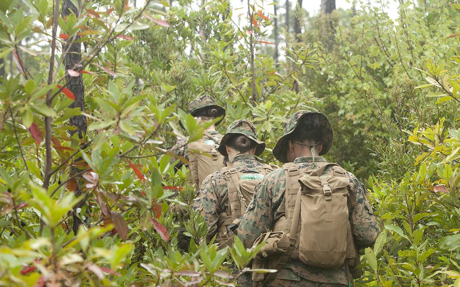 U.S. Marines in training navigate through forest grounds using the land navigation instruction given by their combat instructors at Camp Geiger, N.C., on Oct. 10, 2013. The Marine Corps was collecting data on the performance of female Marines when executing existing infantry tasks and training events for possible placement in jobs currently limited to males.