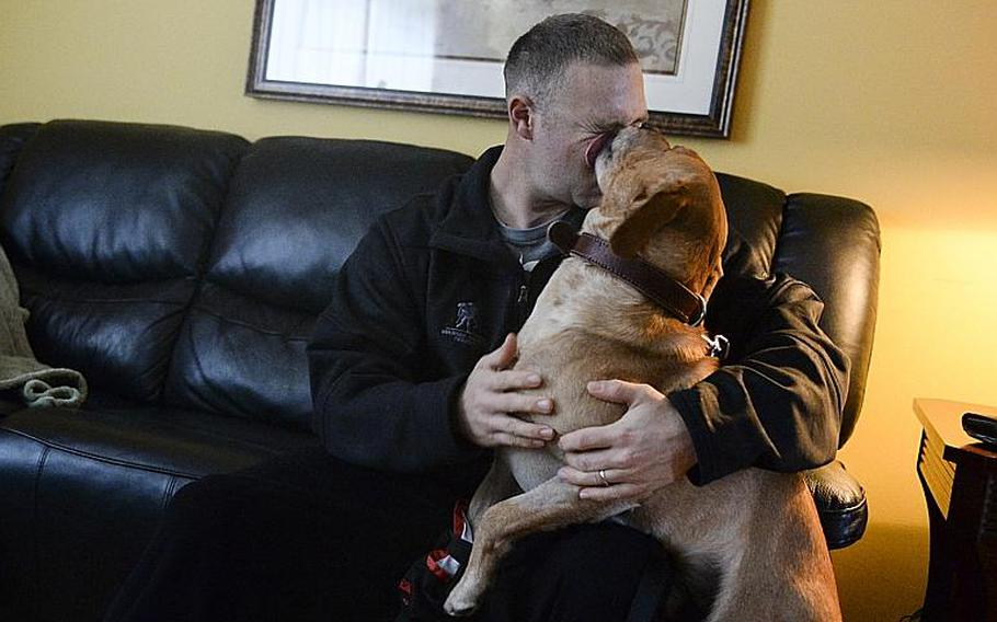 Corky shows his affection for Sgt. Eric Goldenthal on Monday, Jan. 27, 2014, at Landstuhl Regional Medical Center. They both received gunshot wounds to the leg while deployed to Afghanistan.