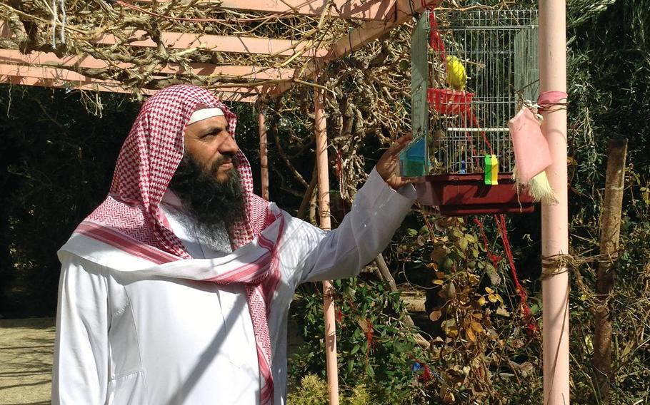 Sheikh Mohammad al-Chalabi in his garden in Jordan's southern city of Maan, on Jan.24, 2105. The leader of a militant Salafist group seeking to establish Islamic rule said a continuing crackdown against Islamist groups and support for U.S. military action could produce a backlash.