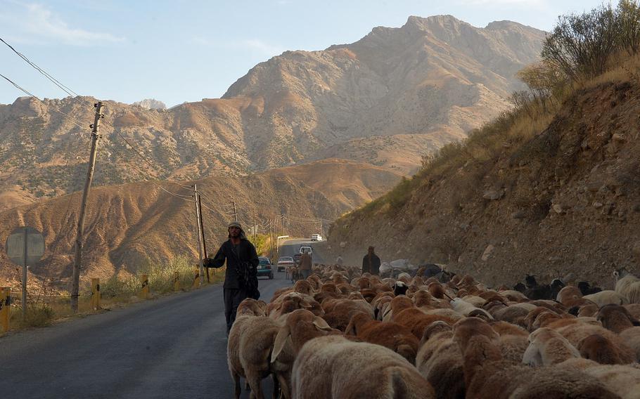 Men herd goats along the road through the Panjshir Valley on Oct. 13, 2016.
