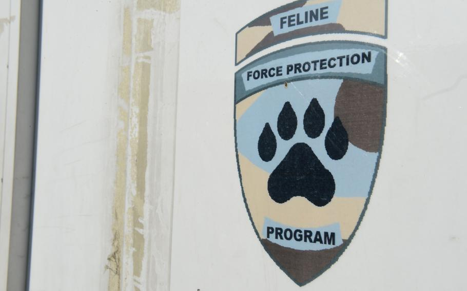 The Feline Force Protection Program's office at NATO's Resolute Support headquarters in Kabul, Afghanistan, on Nov. 8, 2016. The program vaccinates, spays and neuters cats that are used to keep other unvaccinated cats from the base.
