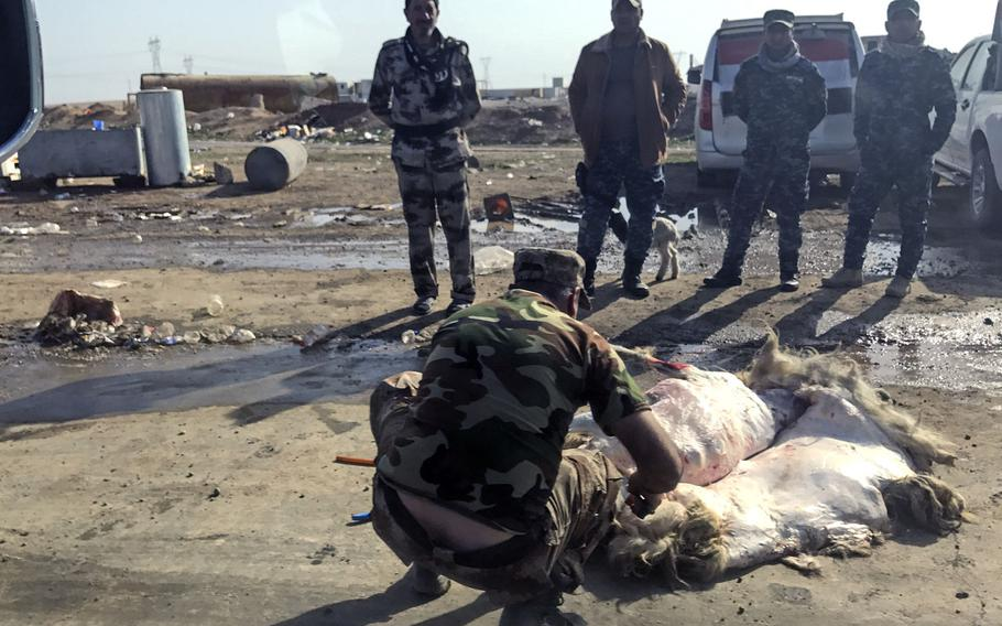 Iraqi soldiers and police look on as a man cleans a sheep on the roadside near Mosul on Tuesday, February 28, 2017.