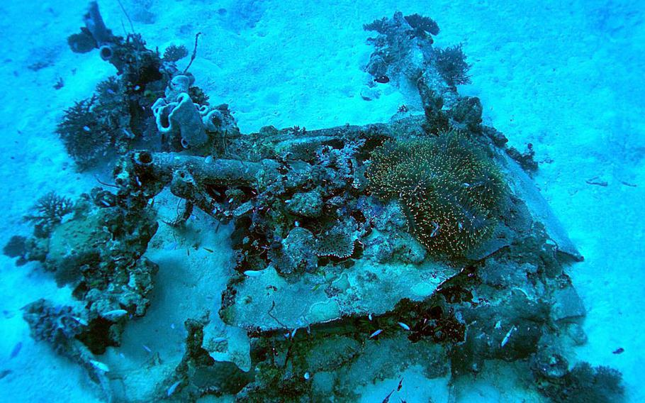 Divers with the Kwajalein MIA Project found the left wing root of an F6F-3 Hellcat fighter plane that crashed Feb. 1, 1944, off Bigej Island in Kwajalein Atoll.